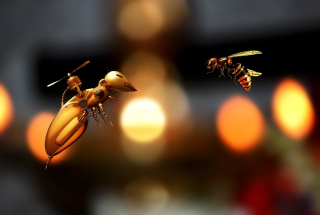 Future drone bees
