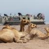 Djibouti. Image: DVIDSHUB on Flickr
